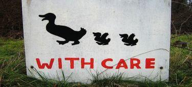 hiring a carer long distance