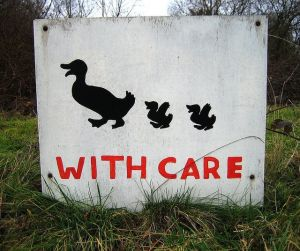 Ducks care crossing sign