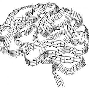 script brain