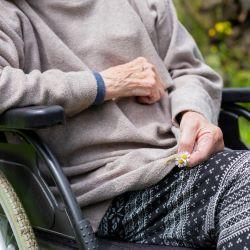 Elderly person in a wheelchair needing palliative care