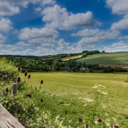 Example of Kent's outstanding range of parks and countryside.