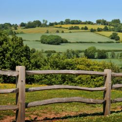 The Kent countryside, a great place for a walk
