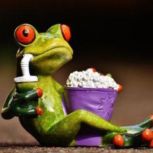 frog-1672887_640