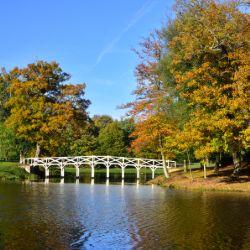 Painshill park, cobham - accessible days out, Surrey