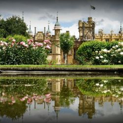 Accessible day out at Knebworth House
