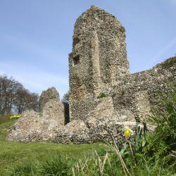 Reduced membership rate at english heritage sites in Hertfordshire
