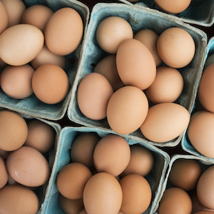Eggs - Dementia support and funding