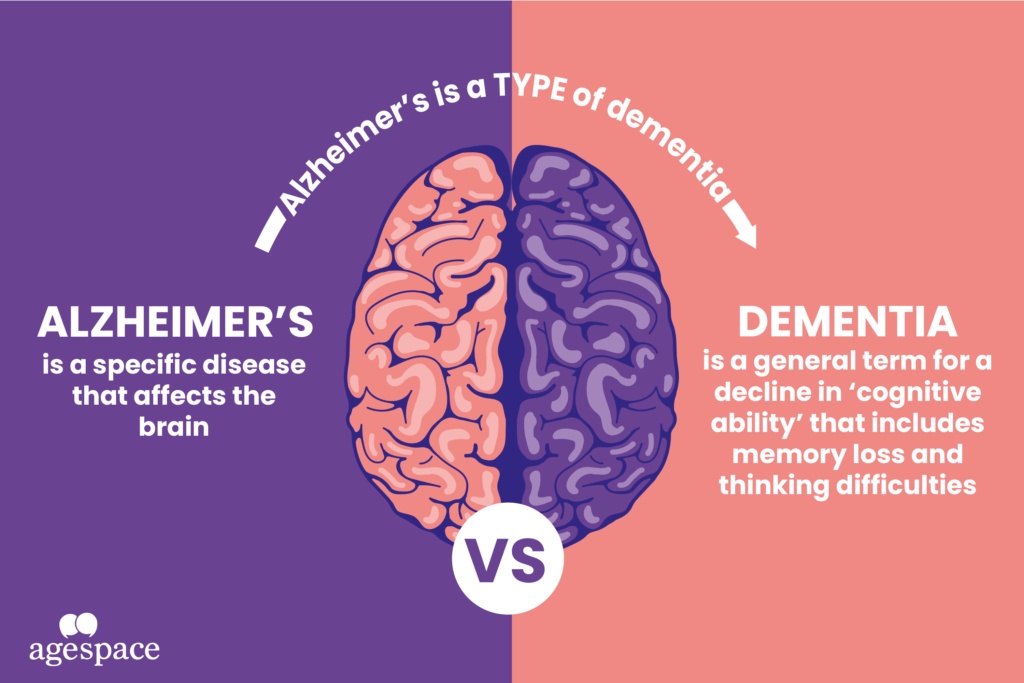 The Differences between Alzheimer's and Dementia Graphic